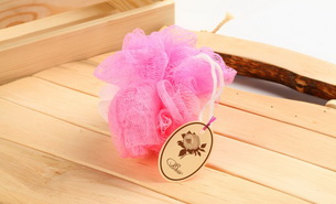 PF 01 35gPlastic sponge pink 305x185 Beauty Shop